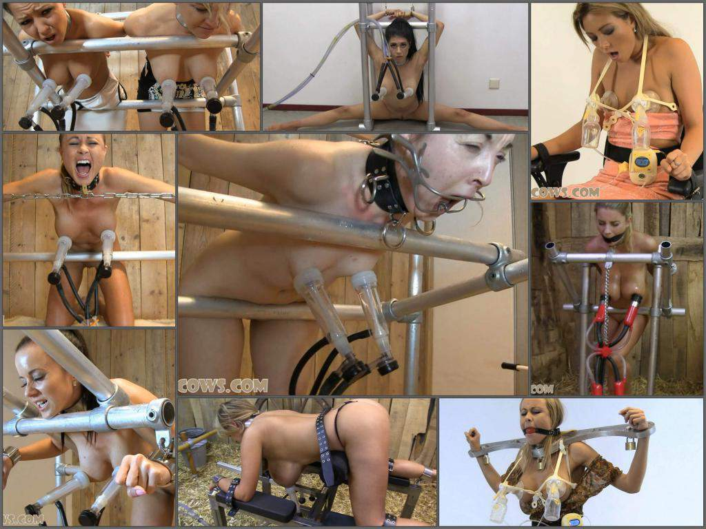 Hucows  – Full SiteRip – 166 pumping tits domination videos
